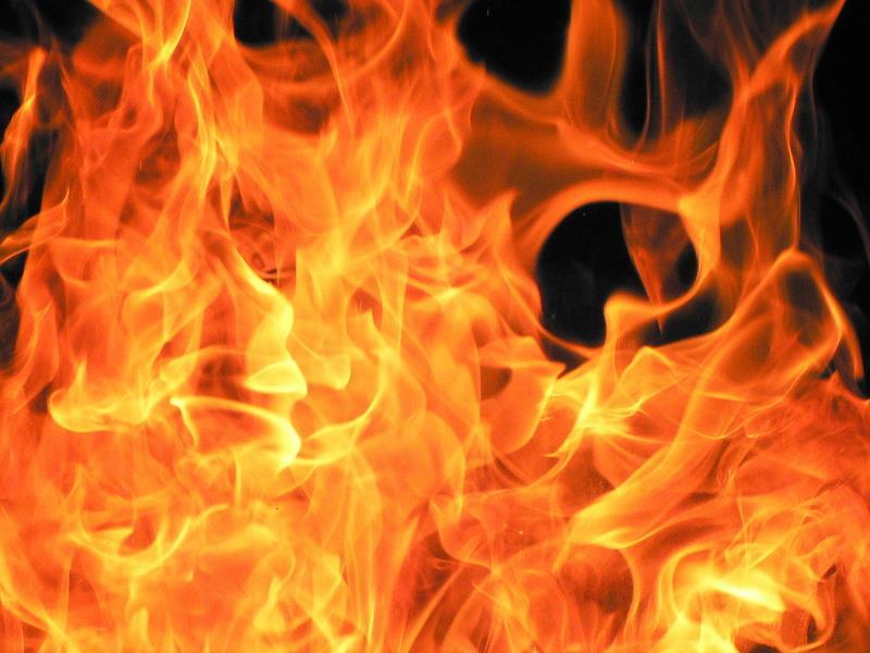 flammer.jpg