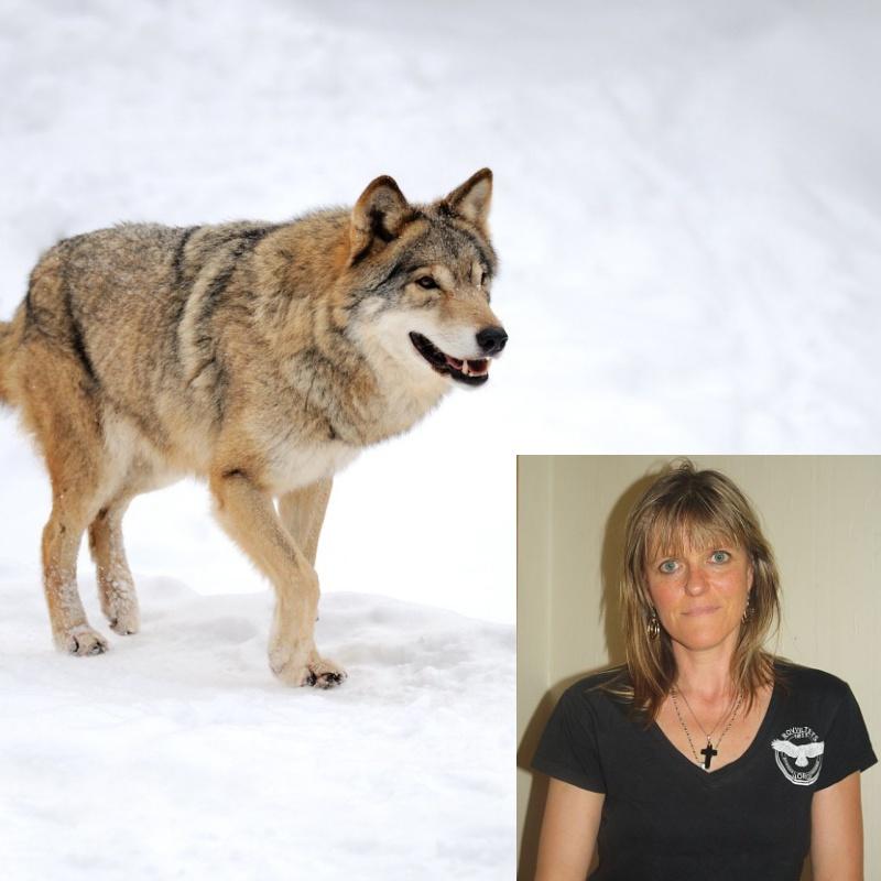 ulv-og-dyreverner.jpg