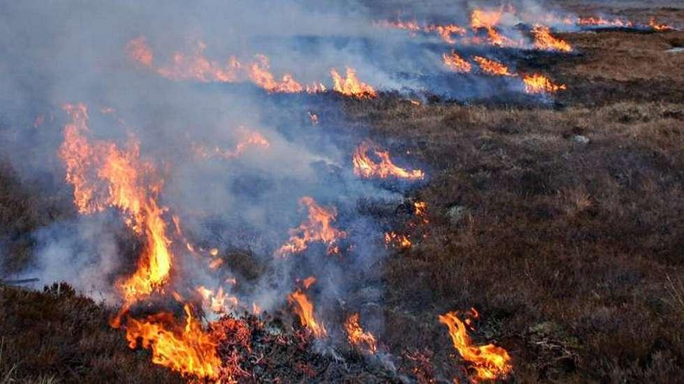 Brannutmarklyngbrann-nett-nytt.jpg